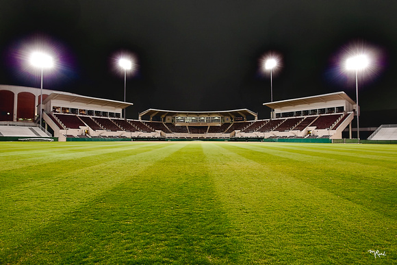 MSU Dudy Noble Field